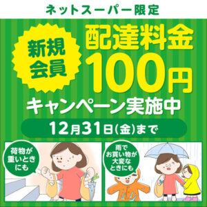 イトーヨーカドーネットスーパー配送料100円キャンペーン